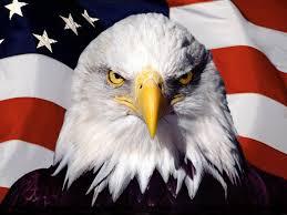 Stare into the face of America.
