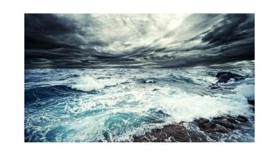 ocean vision